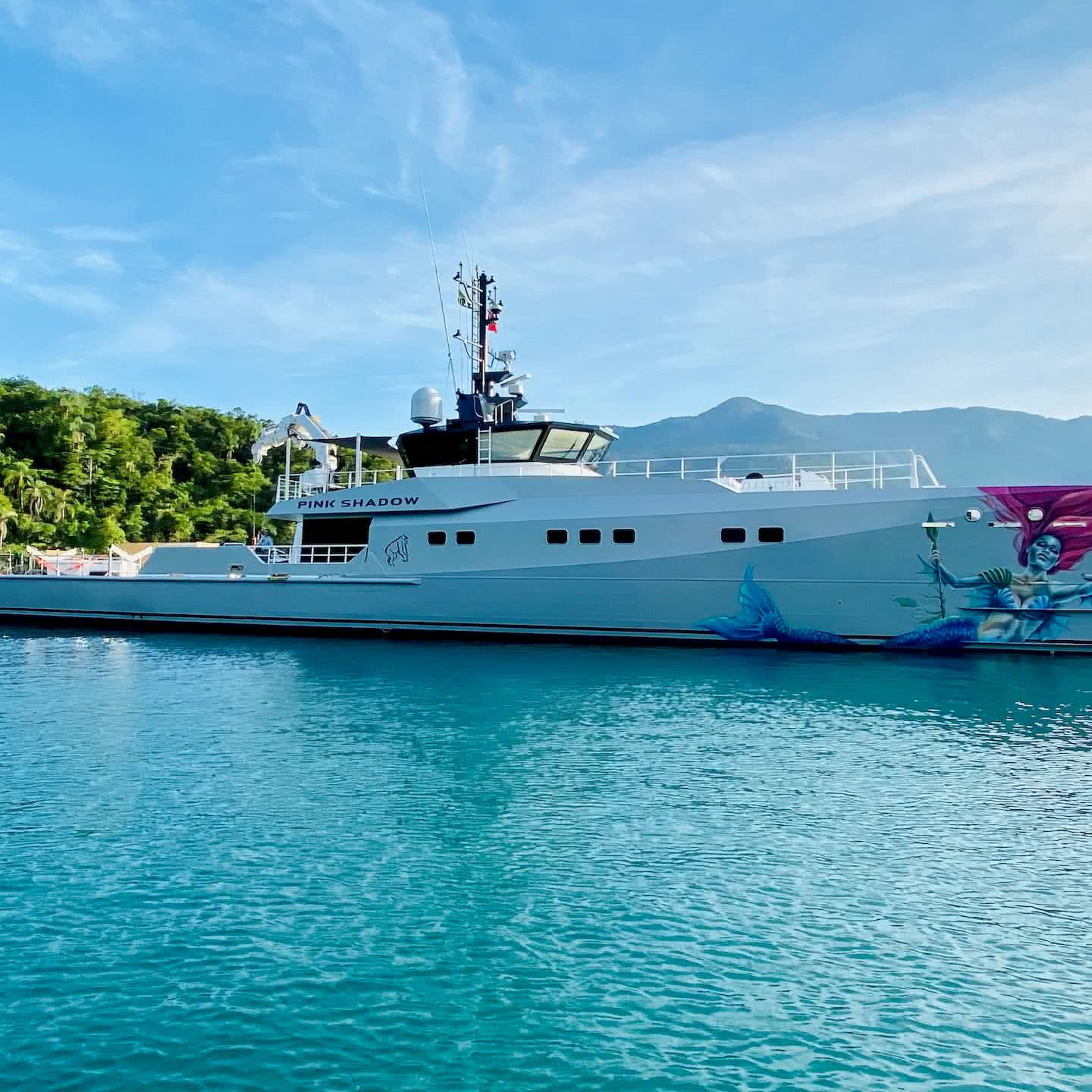 Pink Shadow Yacht Support Vessel PINK GIN